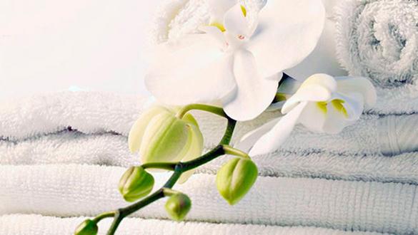 Giặt ủi Cho Spa - Massage